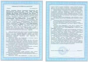 Банковская гарантия на обеспечение исполнения контракта участнику торгов