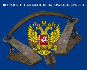 Наказание за браконьерство: статья КОАП РФ
